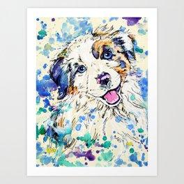 Aussie Pup - Australian Shepherd Dog Painting Art Print