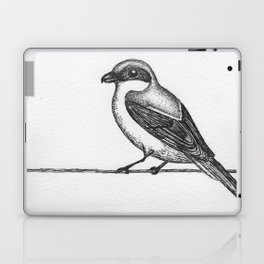 Loggerhead Shrike Laptop & iPad Skin