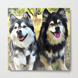 Mr and Mrs Finnish Lapphund Metal Print