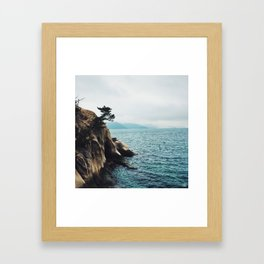 Okunoshima/ Rabbit Island (Japan) Framed Art Print