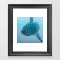 Mola 2 Framed Art Print