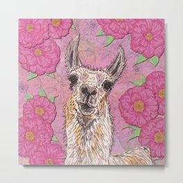 Perfectly Pink Llama Metal Print