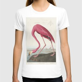 Pink Flamingo from Birds of America (1827) by John James Audubon (1785 - 1851 ), etched by Robert Havell (1793 - 1878) T-shirt