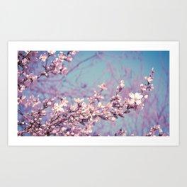 Soft spring Art Print
