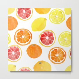 Watercolor vector citrus fruits Metal Print