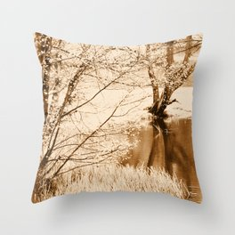 Lakeside Reflections Throw Pillow