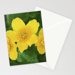 Marsh Marigold Caltha Palustris Stationery Cards
