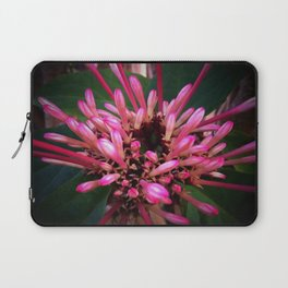 Morning in winter Laptop Sleeve