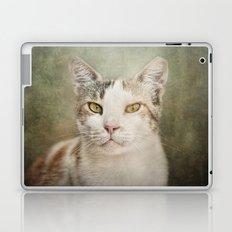 The Feral Cat Laptop & iPad Skin