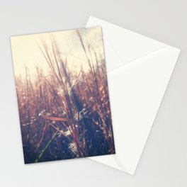 Clothed In Beauty.  Stationery Cards