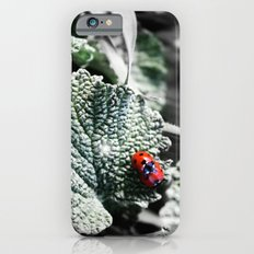 Lady Bugs Caught In Action iPhone 6 Slim Case