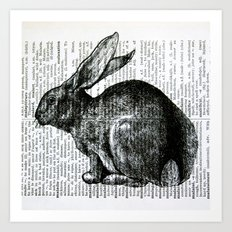 French Rabbit Art Print