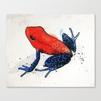 frog Canvas Prints featuring Frog by Jacob Haynes