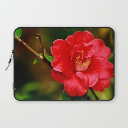 Camellia japonica Laptop Sleeve