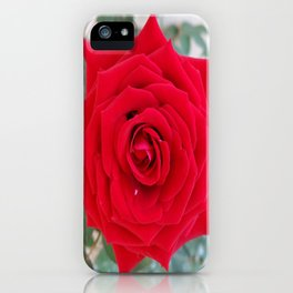 ONE & ONLY YOU iPhone Case