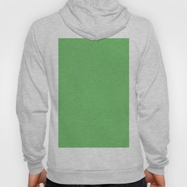 Spring Green Solid Color Hoody