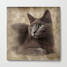 Mitzy The Cat Metal Print