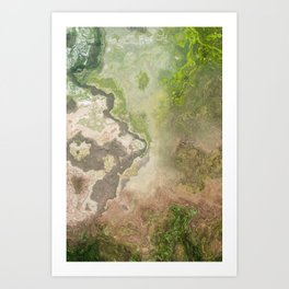 from above - wonderland Art Print