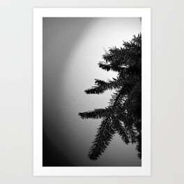 Creep into view Art Print