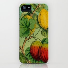 Gooseberry Branch iPhone Case