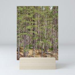 Tall Trees on the shore Mini Art Print