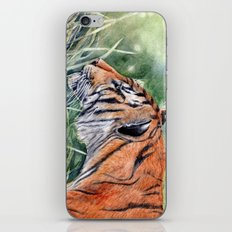 Bengal Tiger iPhone & iPod Skin