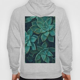 Succulents Pattern (Color) Hoody
