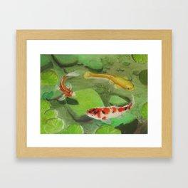3 Koi Framed Art Print