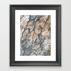 platanus skin Framed Art Print