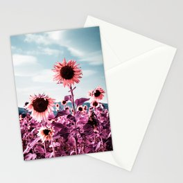 Pink Sunflowers Stationery Cards