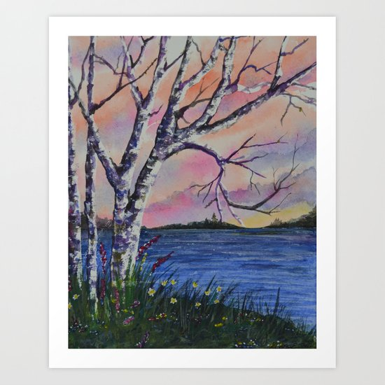 Birch Tree Sunset Art Print