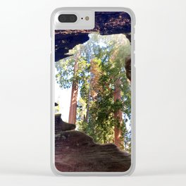 View of Giant Sequoias from Inside a Fallen Sequoia Clear iPhone Case