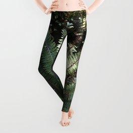 Tropical Rainforest Fern Leggings