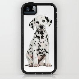Cute Dalmatian 6 iPhone Case