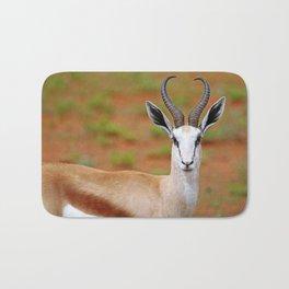 Springbok in Namibia, wildlife Bath Mat