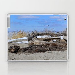 Winter in Maumee Bay Laptop & iPad Skin