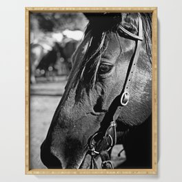 Horse-1-B&W Serving Tray
