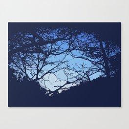 Fabulous view Canvas Print