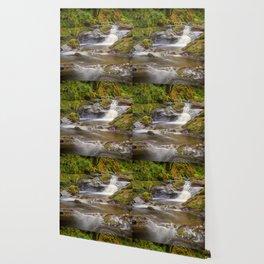 Glenariff Falls Wallpaper