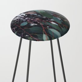 Gum Nuts Counter Stool