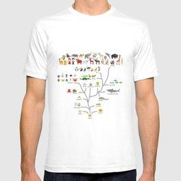 Evolution scale from unicellular organism to mammals. Evolution in biology, scheme evolution T-shirt