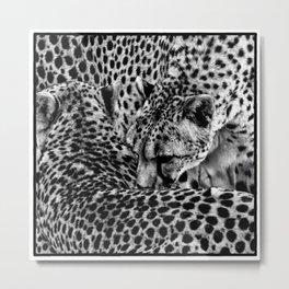 Cheetah Abstract Metal Print