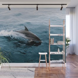 Dolphin in the Atlantic Ocean - Wildlife Photography Wall Mural