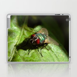 But A Fly Laptop & iPad Skin