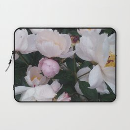 A Walk in the Arb Laptop Sleeve