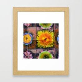 Prehepaticus Framework Flower  ID:16165-082221-45091 Framed Art Print