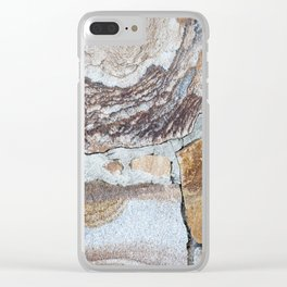 Vintage Shabby Pale Blue Wood Design Clear iPhone Case