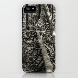 Fallen #2 iPhone Case