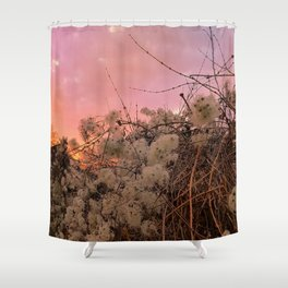 Winter Sunset And Clematis Vines Shower Curtain