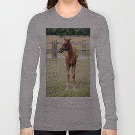 Little Horse Long Sleeve T-shirt